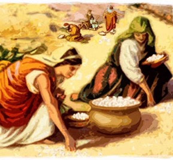 Is the Bible Really My Daily Manna? | Here's the Joy