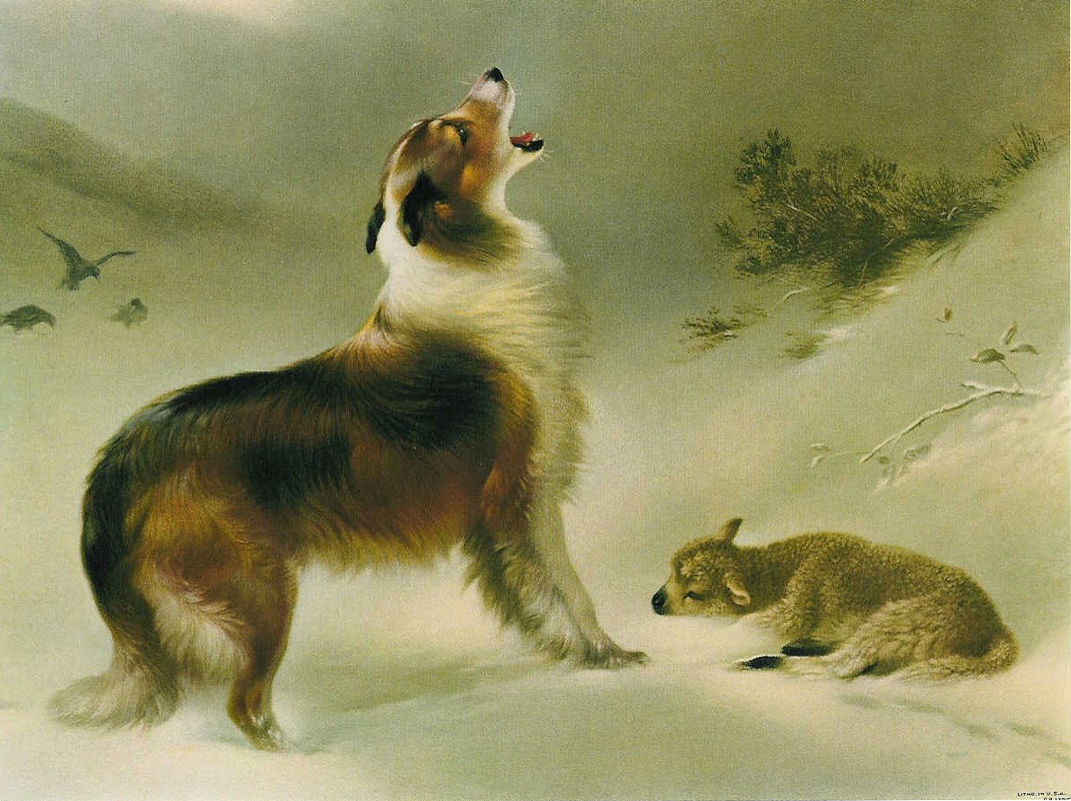 found-by-walter-hunt